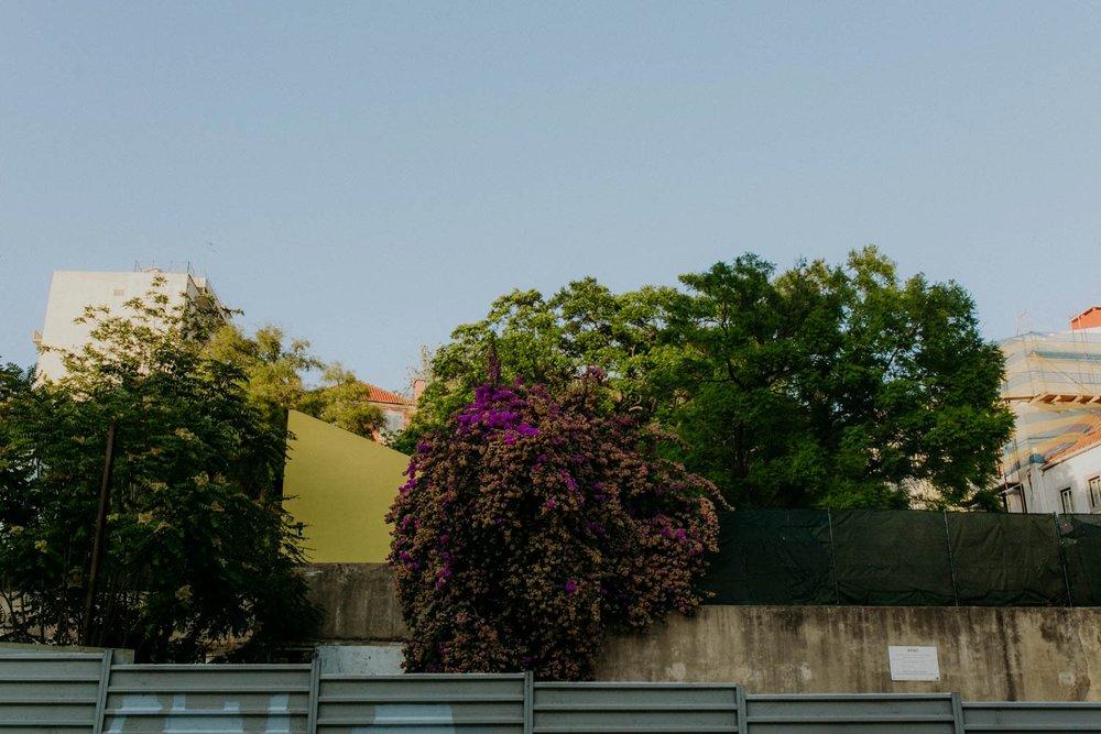 portugal-lagos-amber-gress_0141.jpg