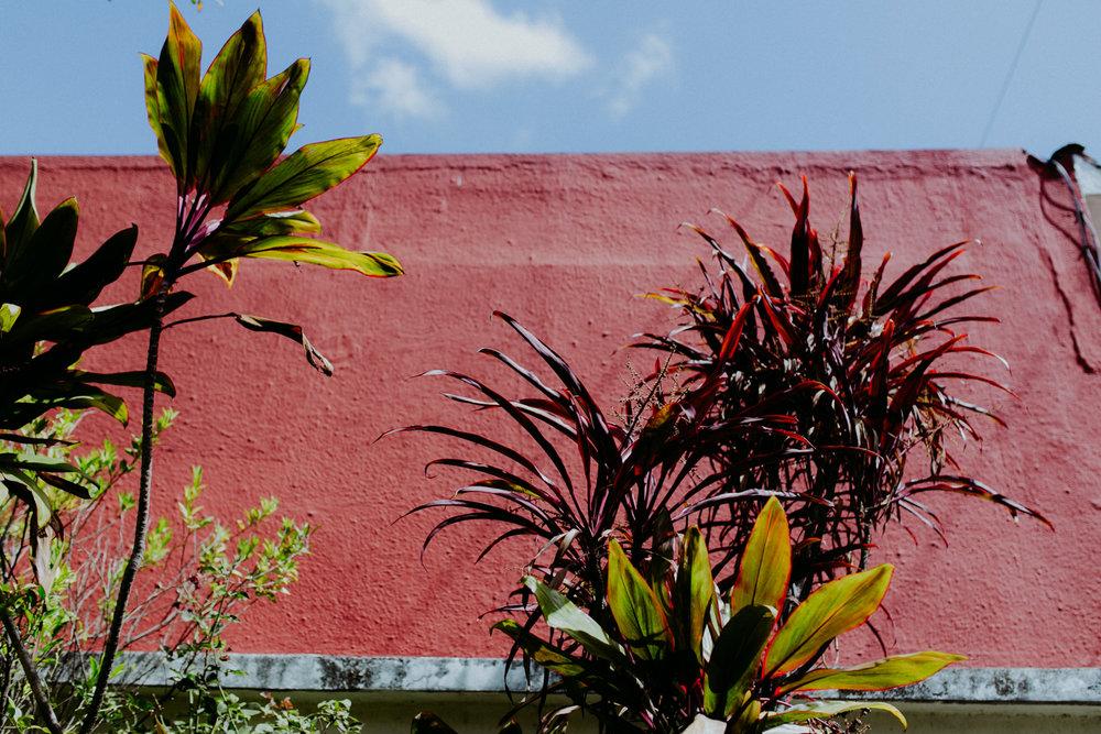 guatemala-amber-gress-0018-.jpg