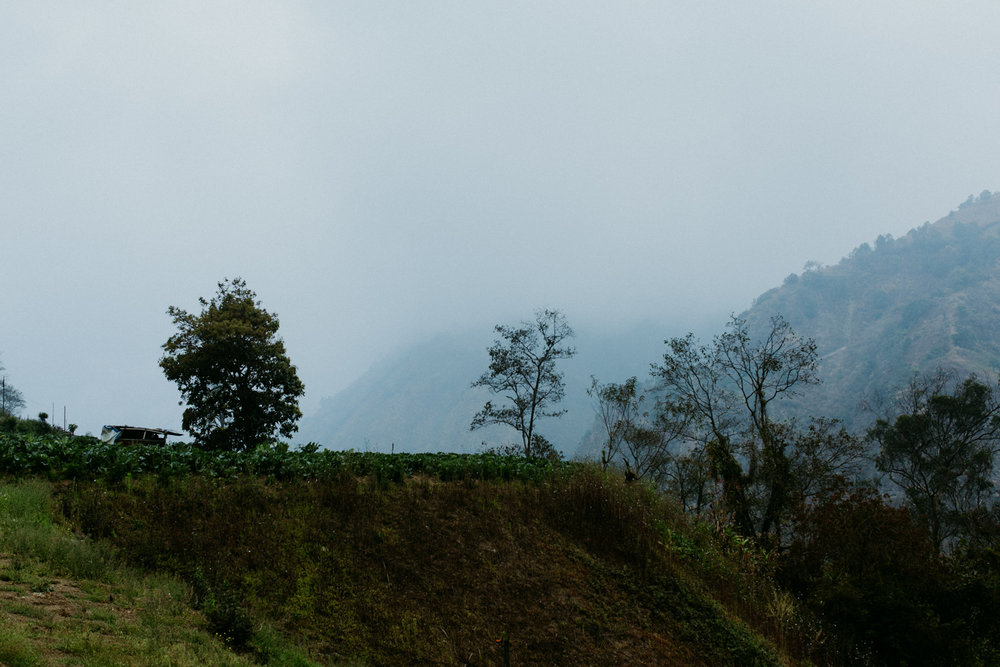 guatemala-amber-gress-0179-.jpg