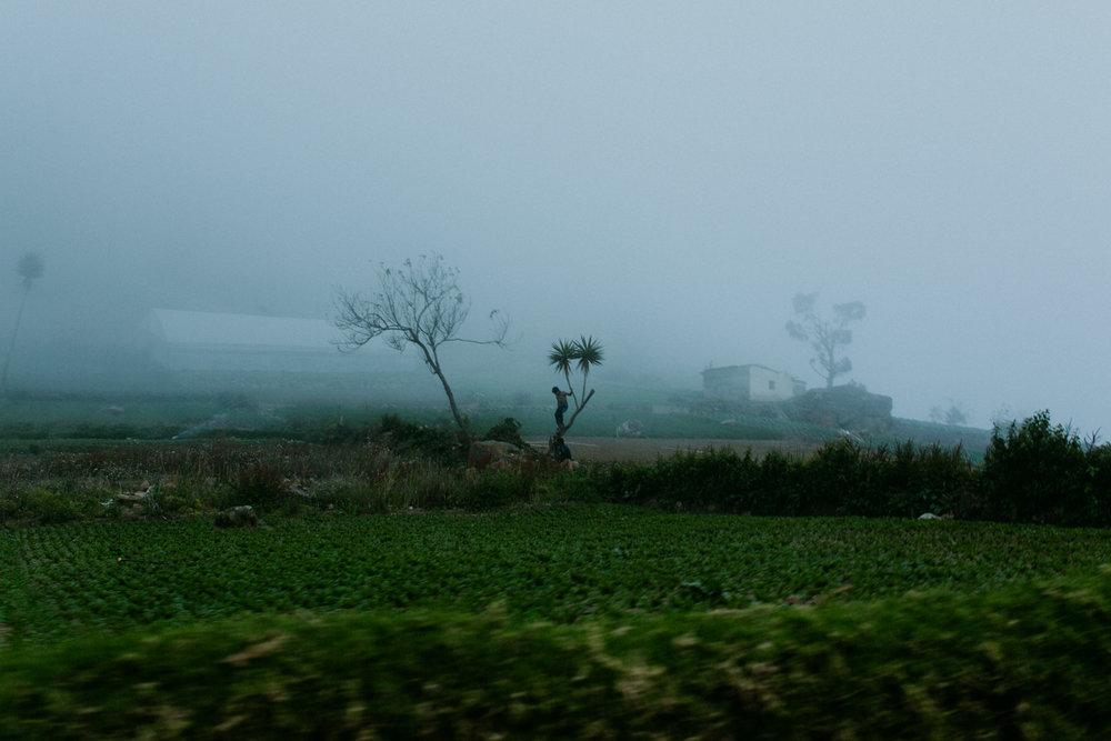 guatemala-amber-gress-0185-.jpg