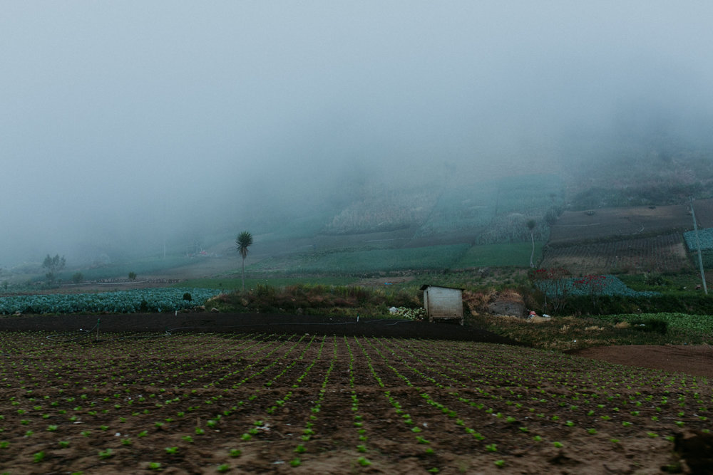 guatemala-amber-gress-0186-.jpg