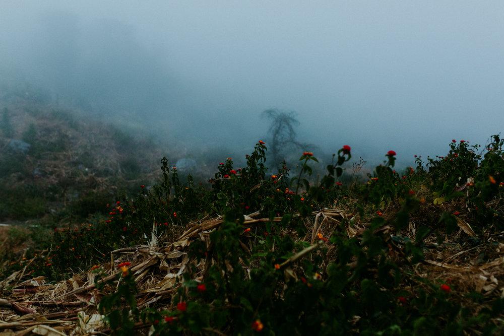 guatemala-amber-gress-0195-.jpg