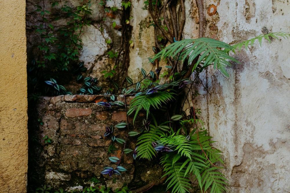 guatemala-amber-gress-0241-.jpg