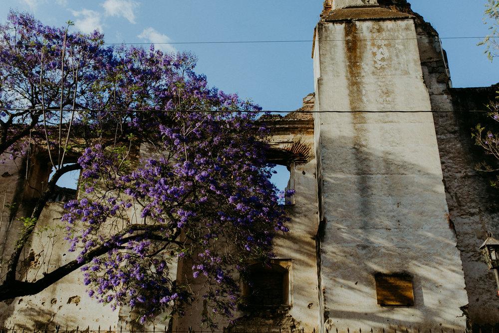guatemala-amber-gress-0258-.jpg