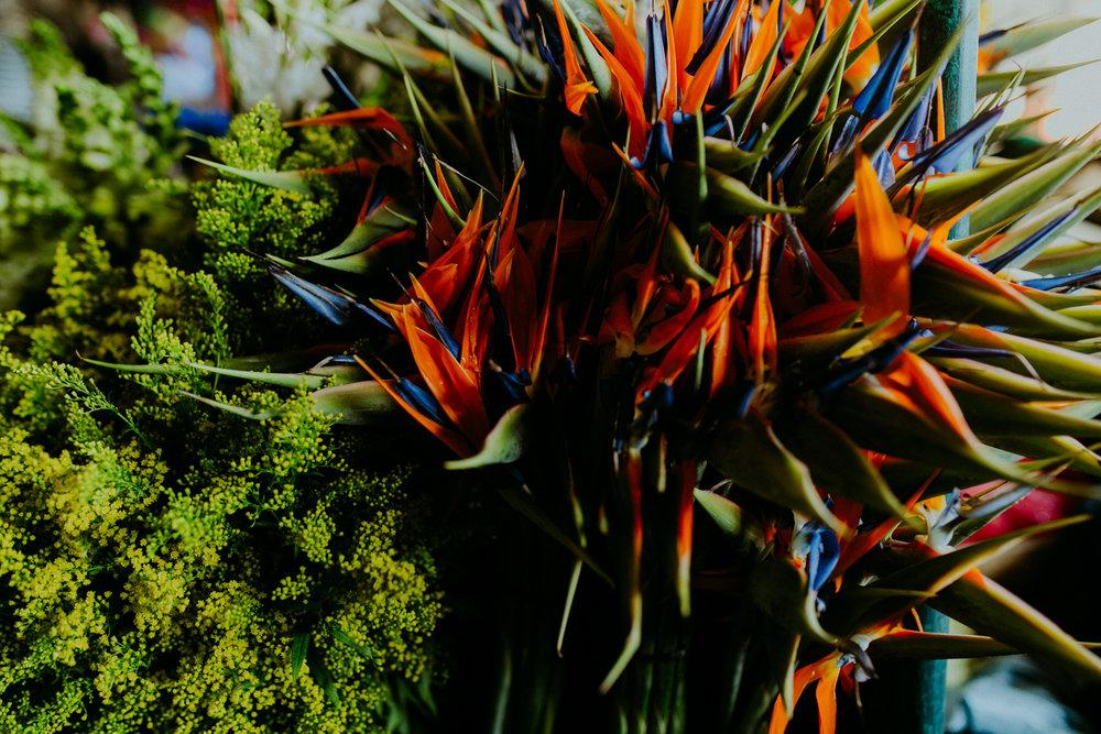 guatemala-amber-gress-0260-.jpg