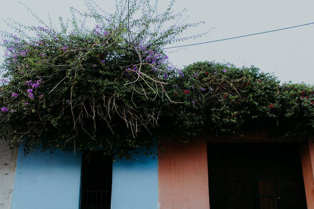 guatemala-amber-gress-0323-.jpg
