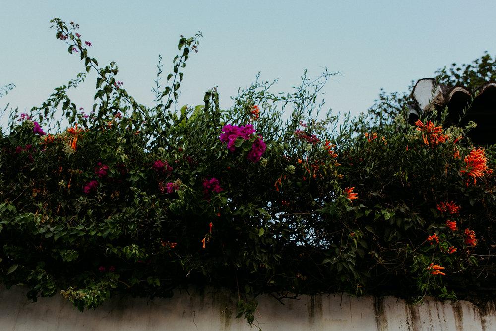guatemala-amber-gress-0332-.jpg