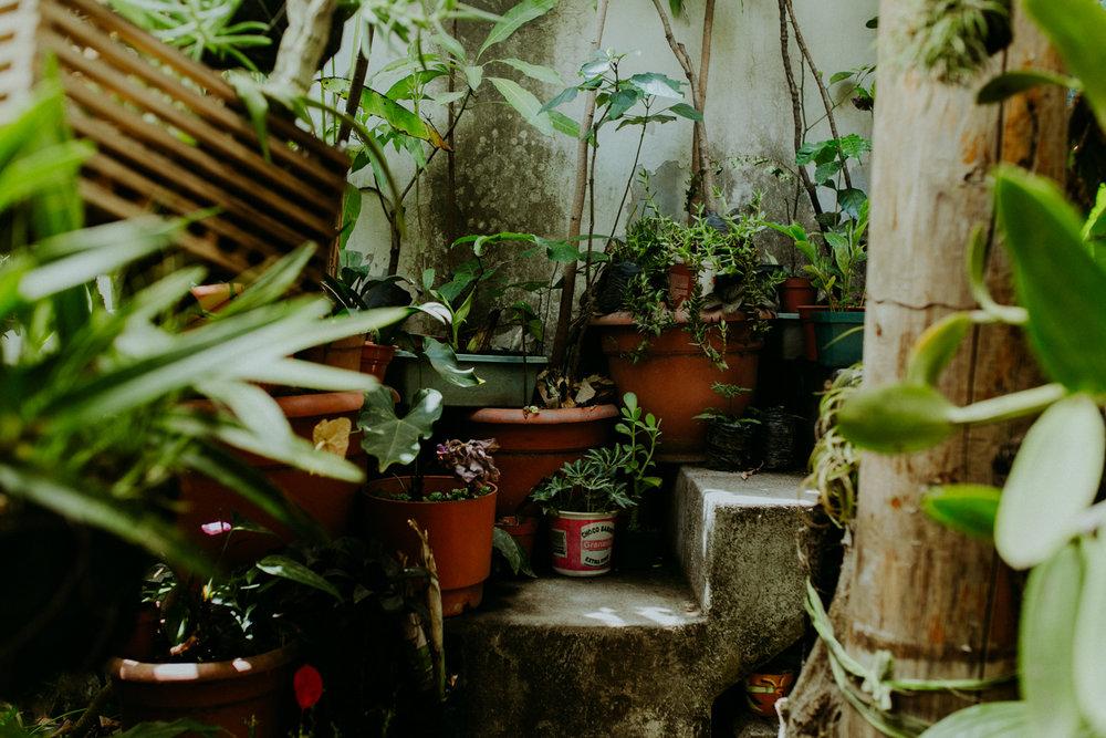 guatemala-amber-gress-0372-.jpg