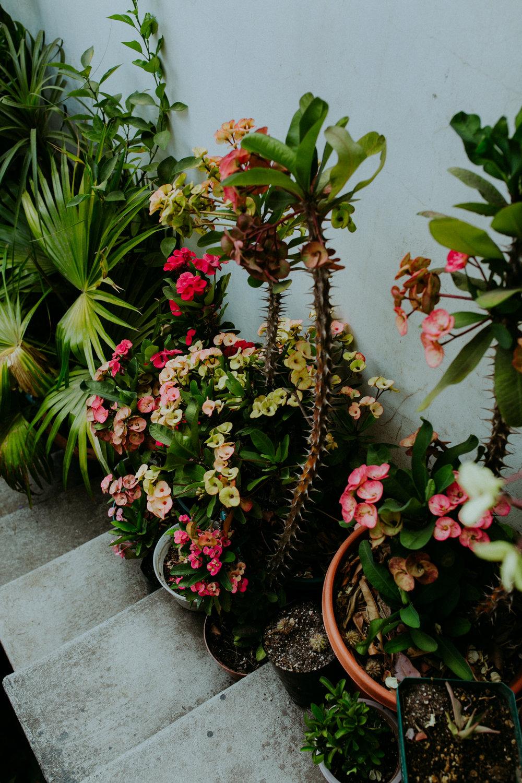 guatemala-amber-gress-0390-.jpg