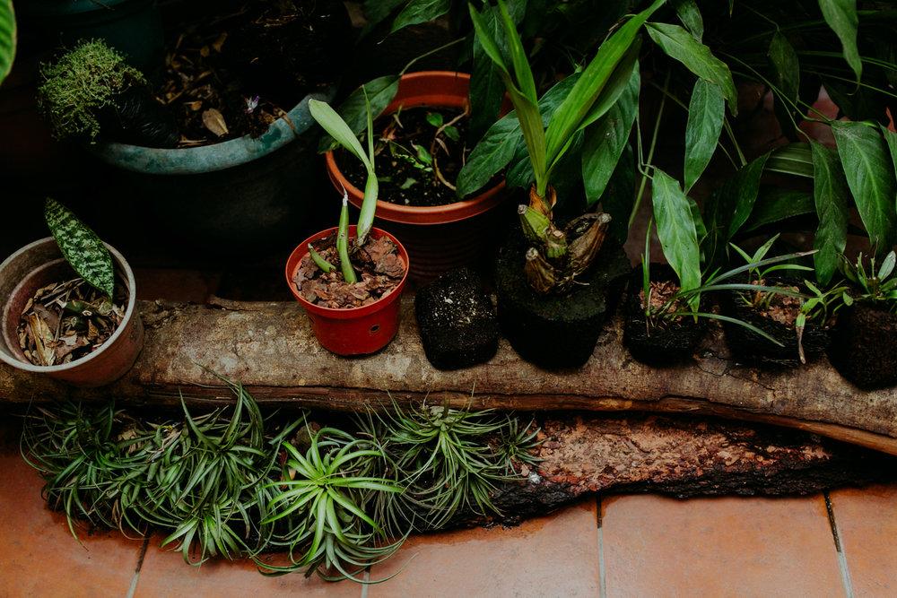 guatemala-amber-gress-0395-.jpg