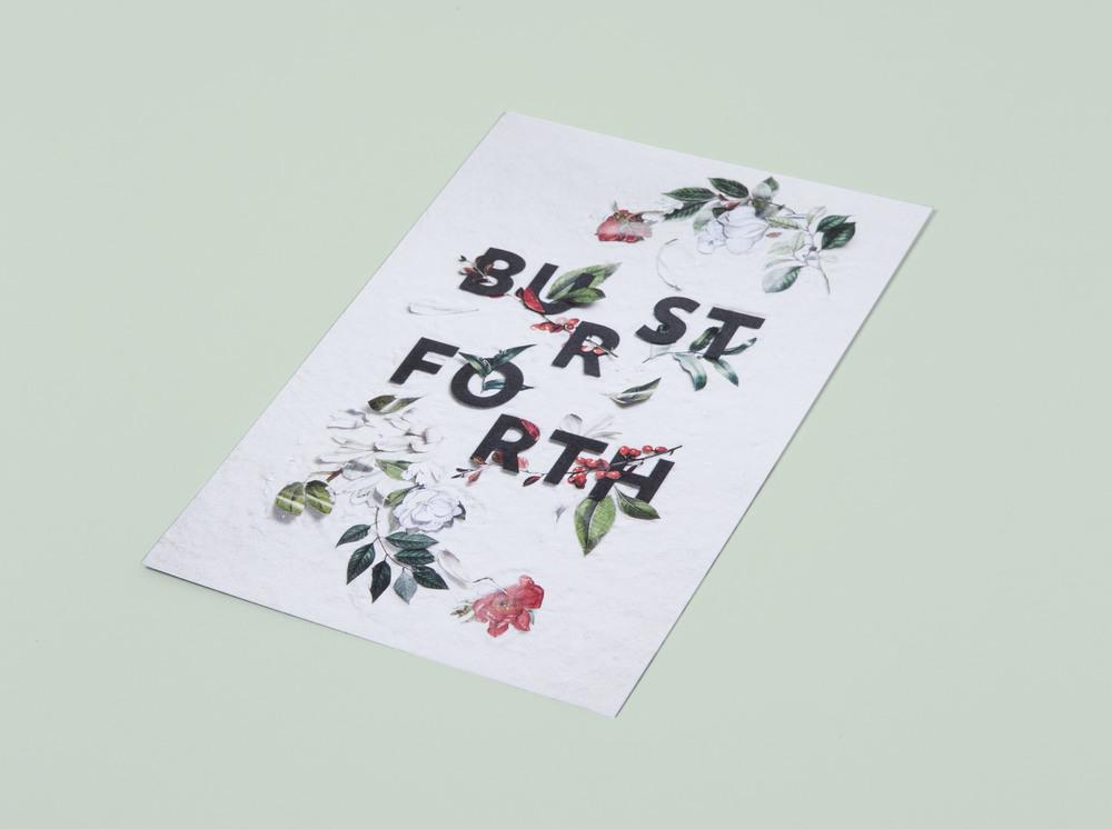 MelissaDeckert_Holiday_BurstForth_Postcard.jpg