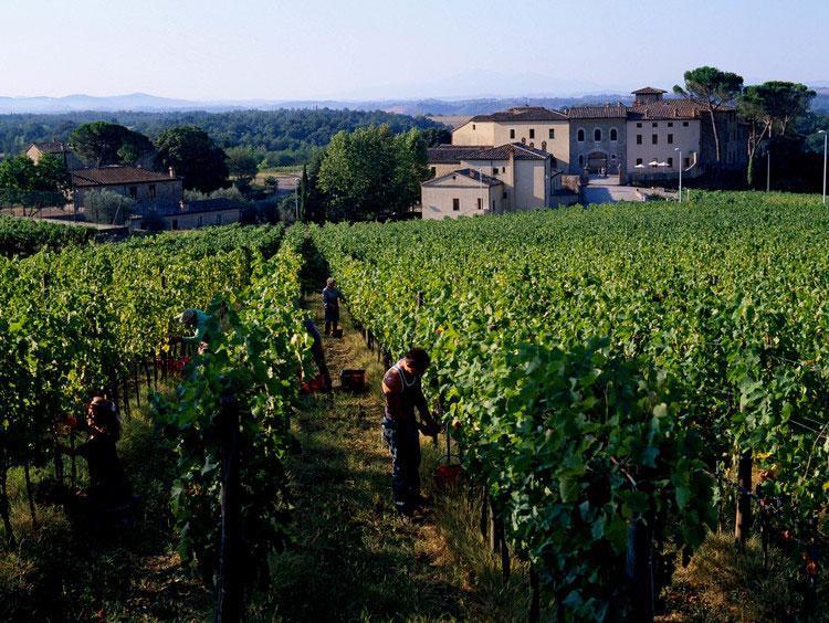 castel-monastero-tuscany03.jpg