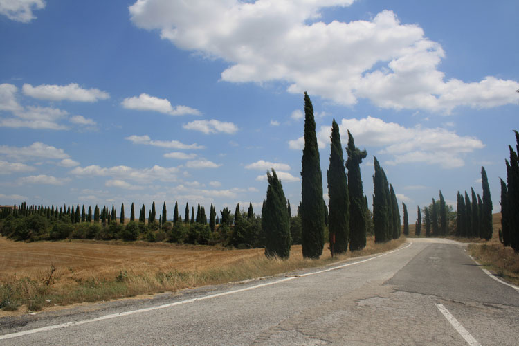 castel-monastero-tuscany23.jpg