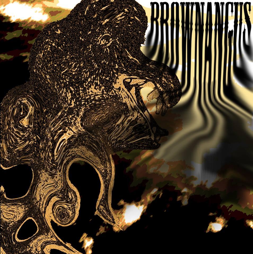 BrownAngus.jpg