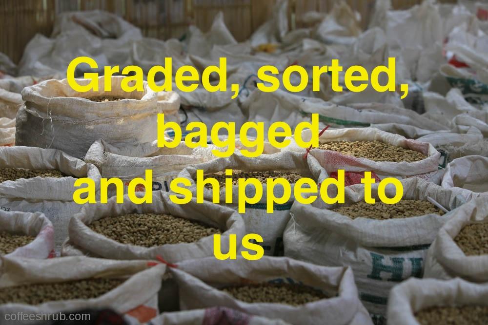 bagged.jpg