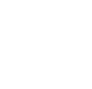 theSWANKstudio-small-white.png