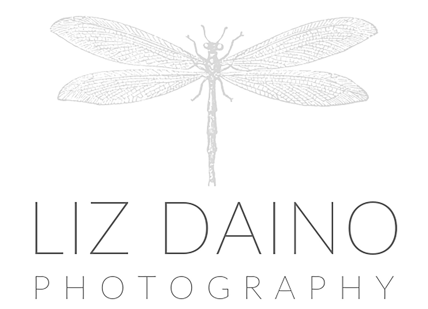 Liz Daino Photography