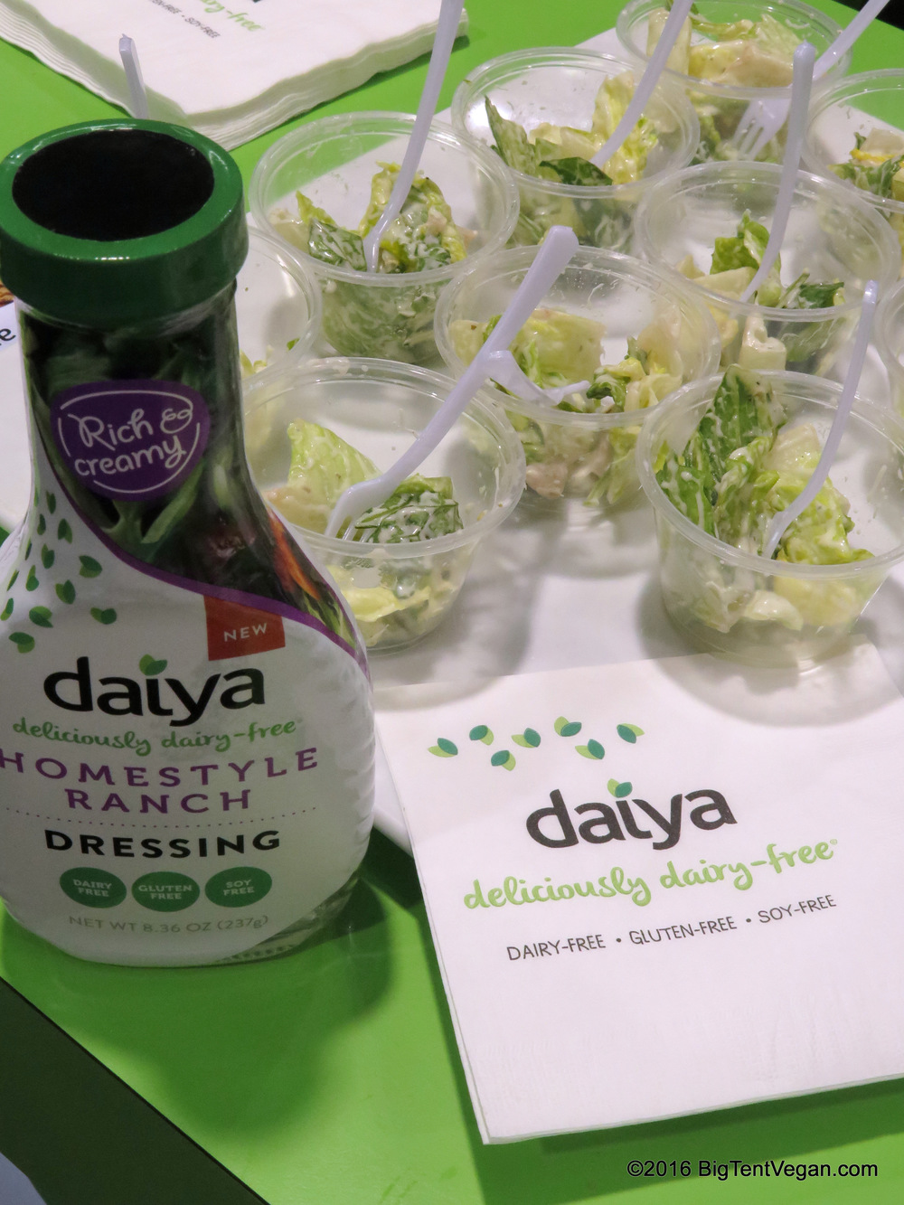 Daiya had a bunch of new products to show at a huge booth.  Along with the pictured Ranch, they were also sampling their new Blue Cheese and Ceasar's dressings.