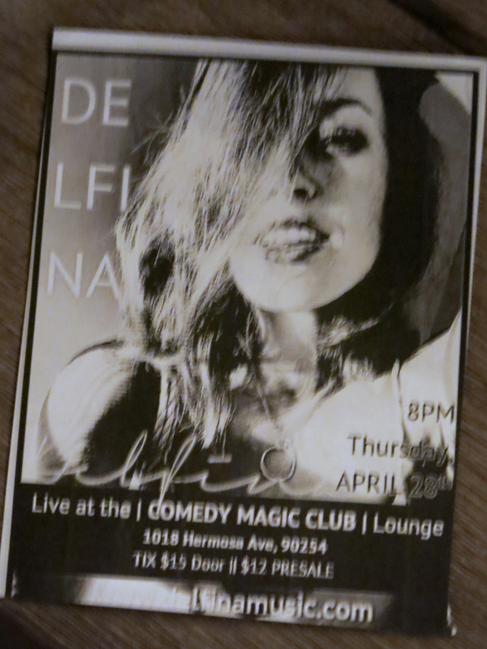 Acoustic guitarist & vocalist  Delfina  performed beautiful and touching songs she composed in honor of animals, including one about a mother cow and her baby who are separated shortly after birth because the mother's milk is taken away to give to humans. We were so moved the music that we forgot to snap a pic, but here's a flyer for one of her upcoming performances.