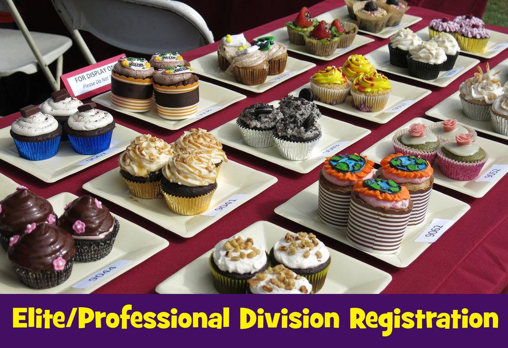 Elite Pro Registration image.jpg