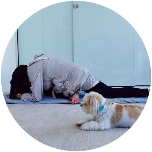 yogacircle.jpg