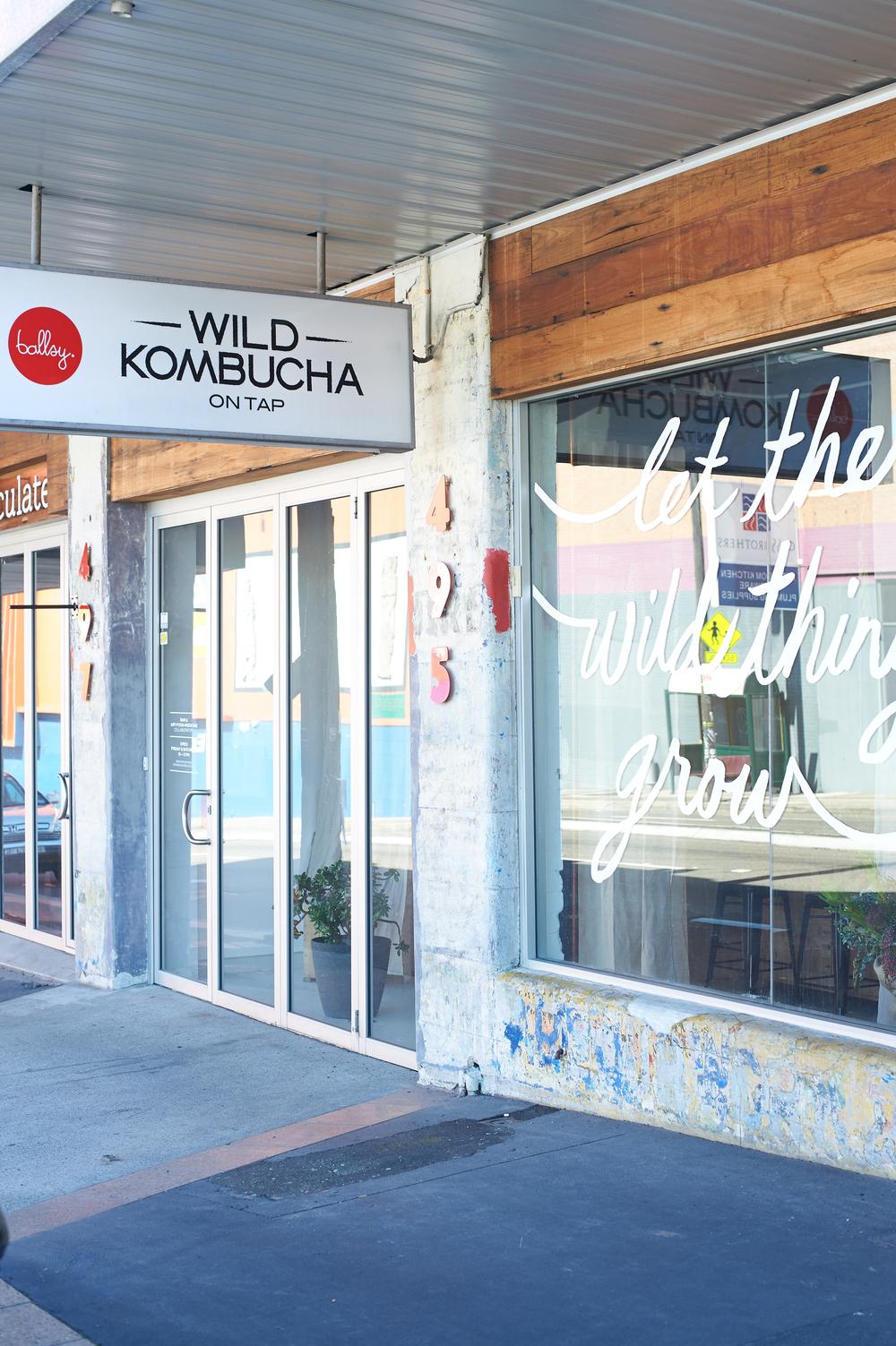 Wild Kombucha_035.jpg