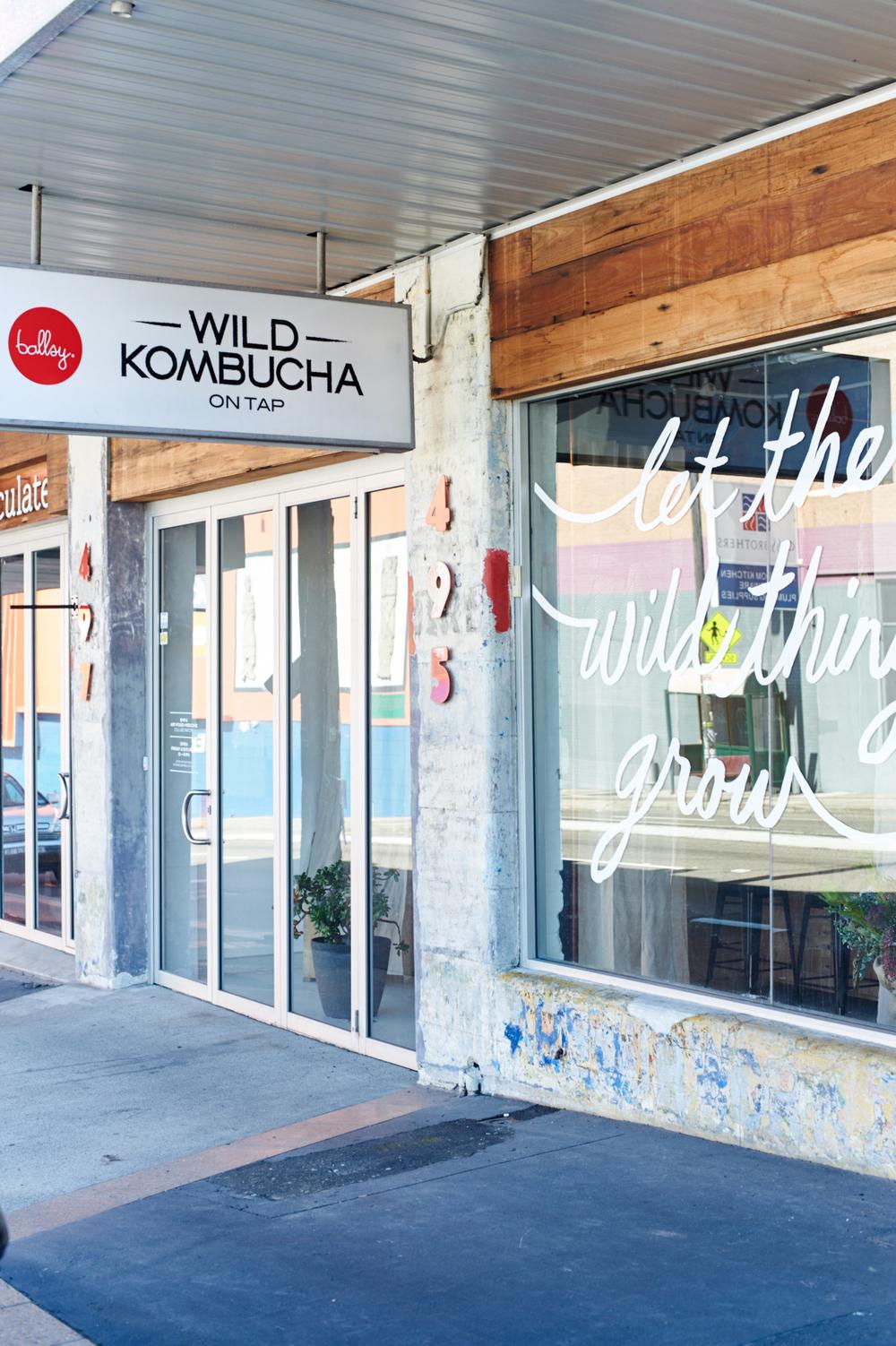 wild_kombucha_credit_maclay_heriot_035.jpg