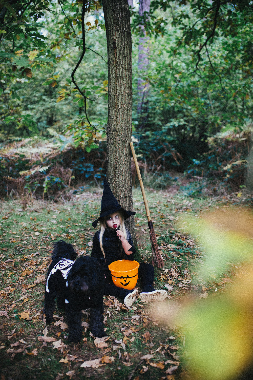 HALLOWEEN LITTLE WITCH RUTLAND PHOTOGRAPHER-47.jpg