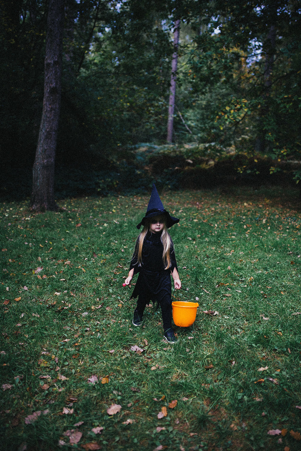 HALLOWEEN LITTLE WITCH RUTLAND PHOTOGRAPHER-52.jpg