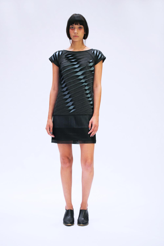 Cadenza Dress.jpg