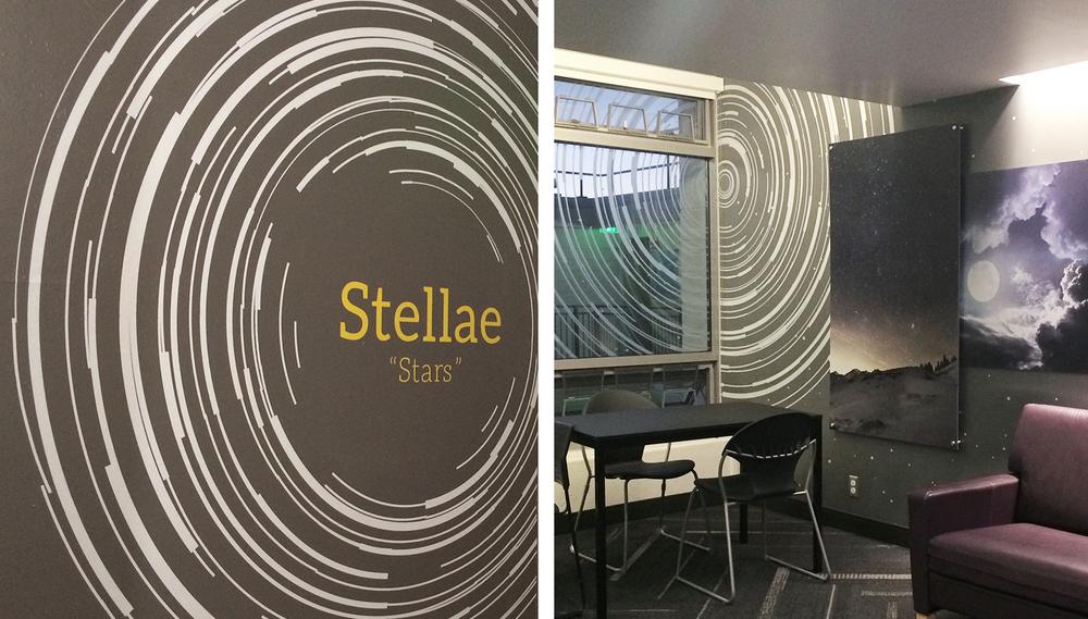 Stellae-inside-web.jpg