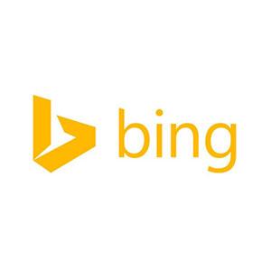 Bing_300X300.jpg