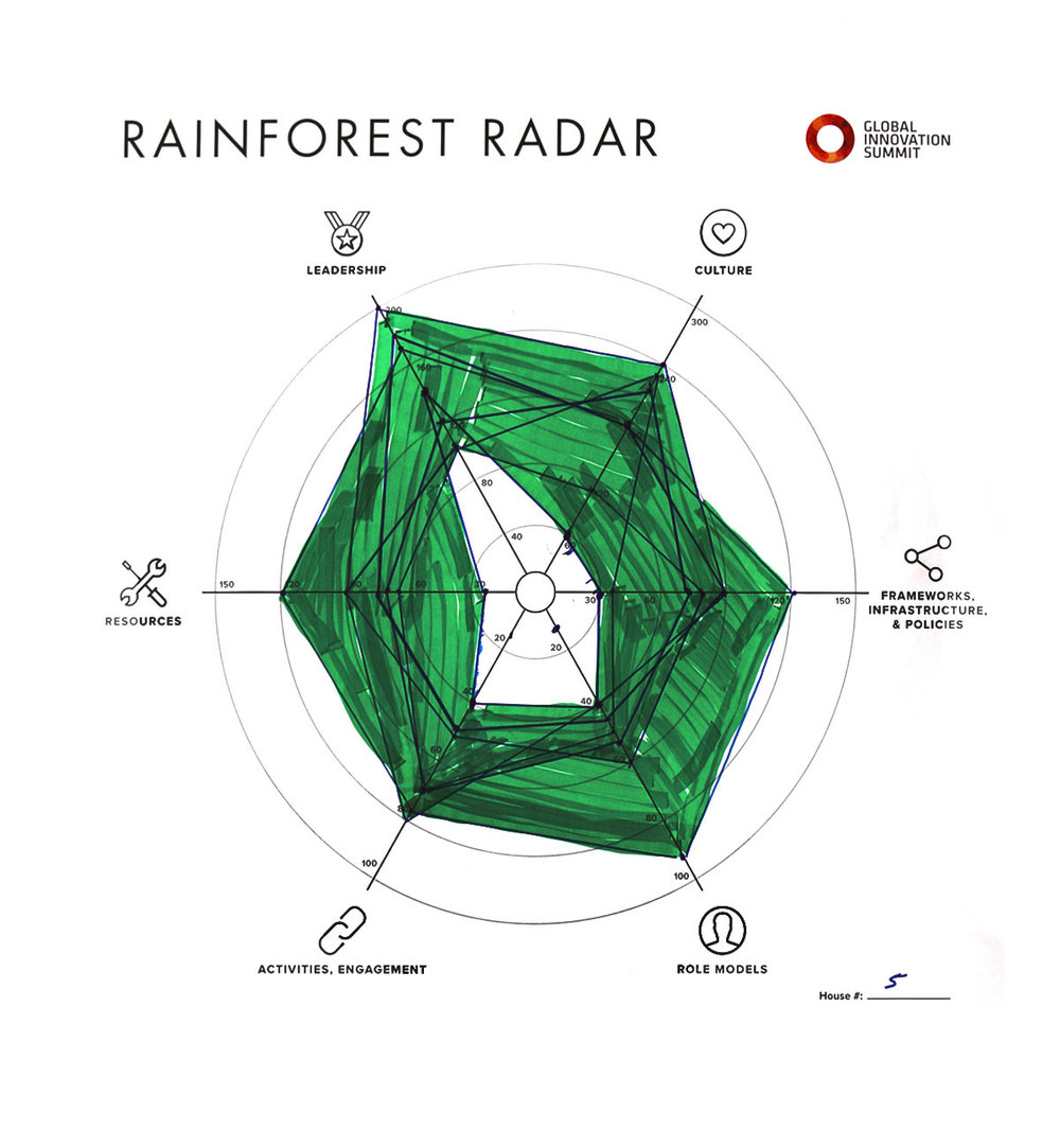 Rainforest_Radar05_1200X1300.jpg