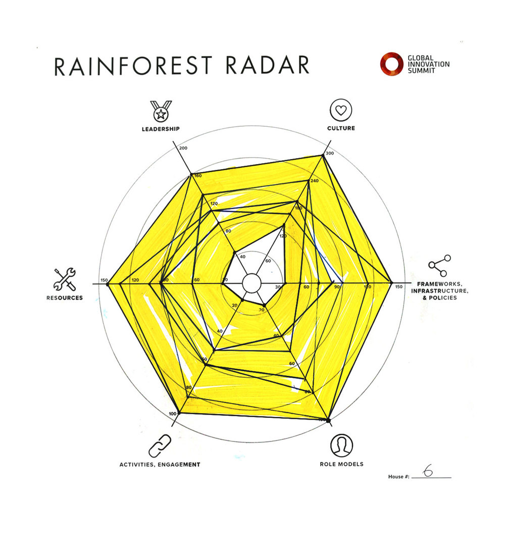 Rainforest_Radar06_1200X1300.jpg