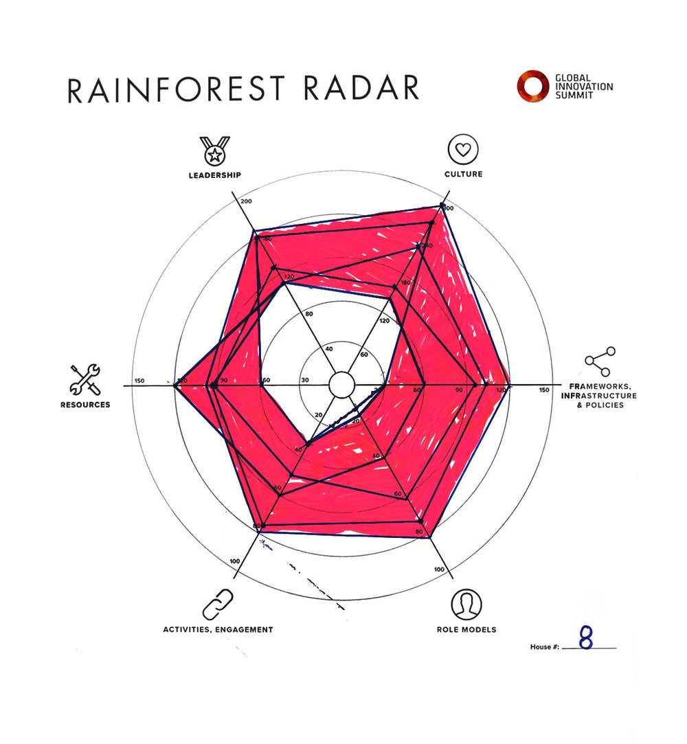 Rainforest_Radar08_1200X1300.jpg
