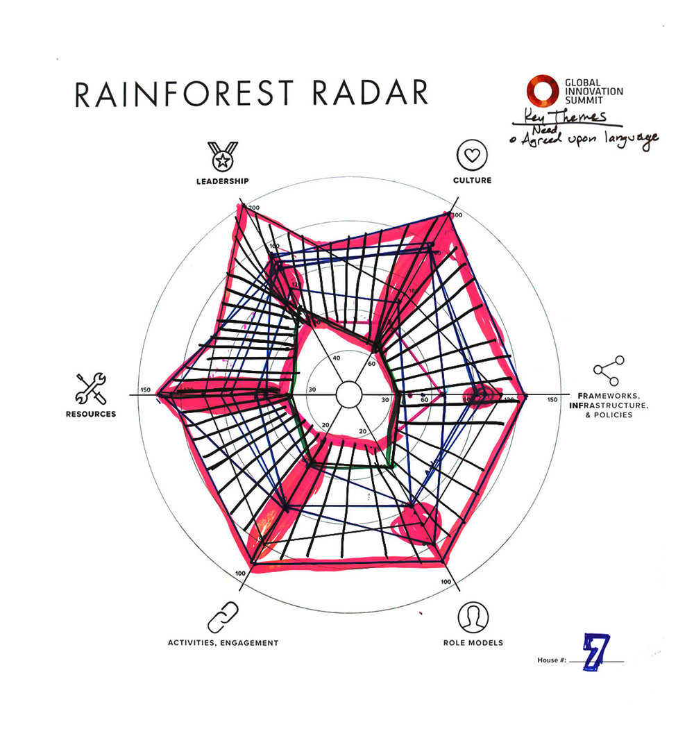 Rainforest_Radar07_1200X1300.jpg