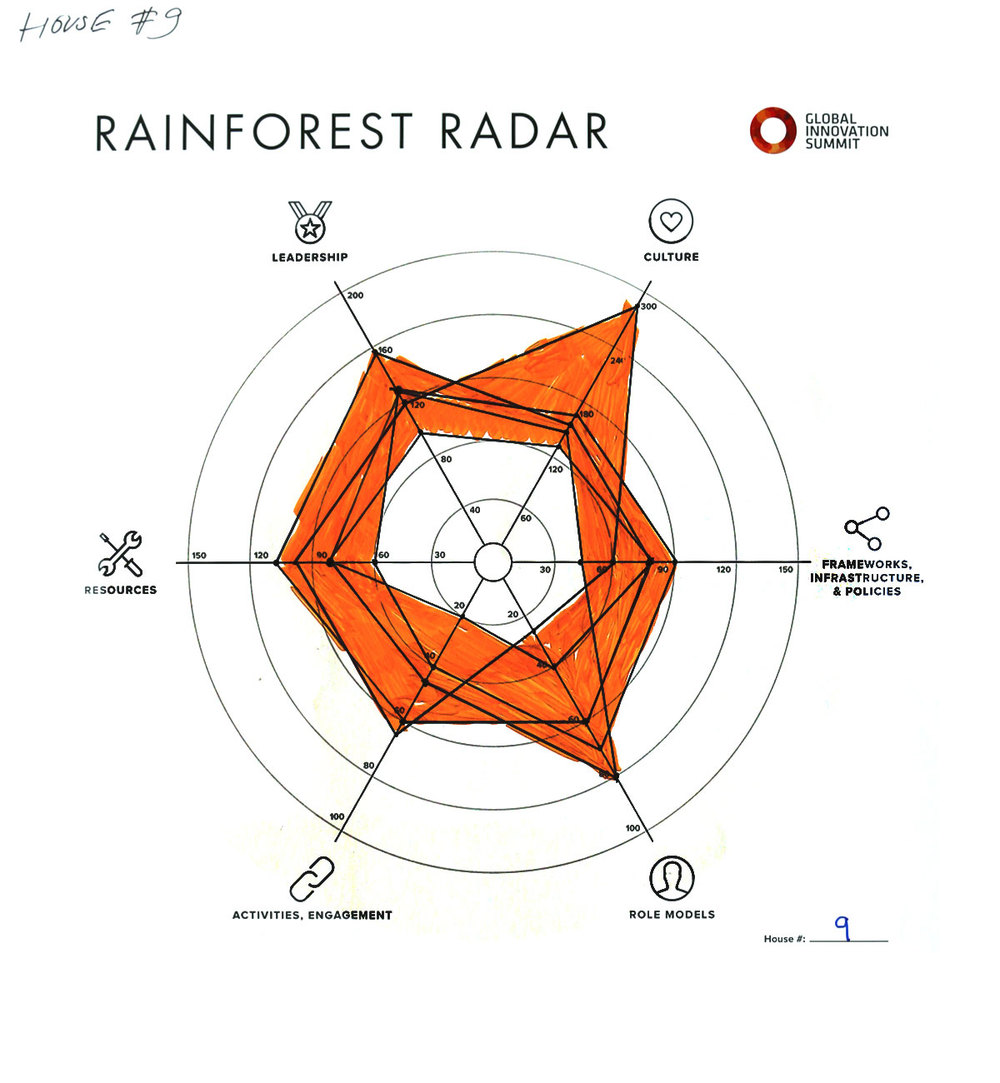 Rainforest_Radar09_1200X1300.jpg
