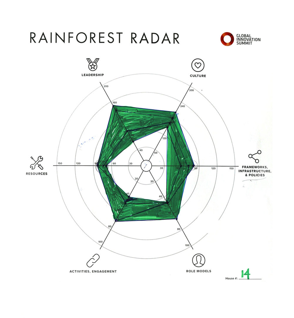 Rainforest_Radar14_1200X1300.jpg