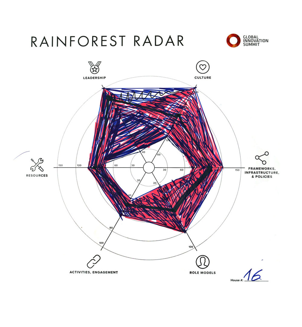 Rainforest_Radar16_1200X1300.jpg