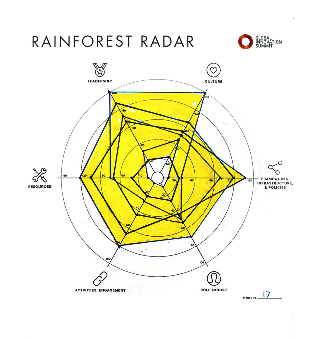 Rainforest_Radar17_1200X1300.jpg