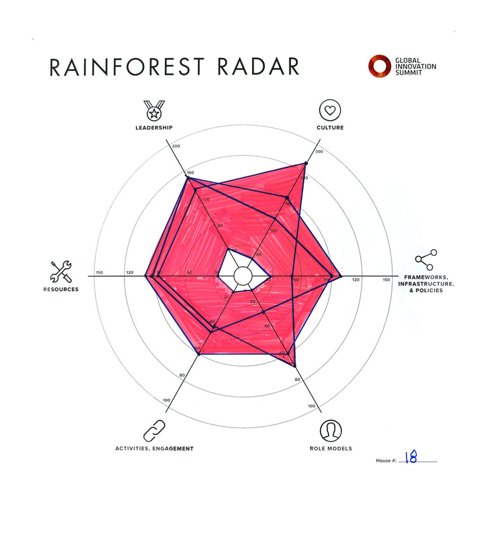 Rainforest_Radar18_1200X1300.jpg