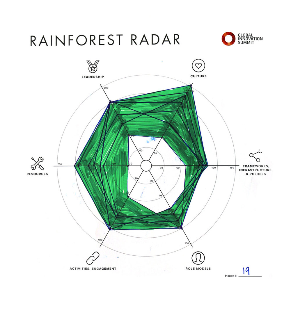 Rainforest_Radar19_1200X1300.jpg