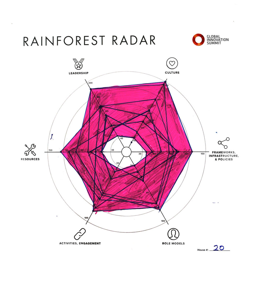 Rainforest_Radar20_1200X1300.jpg