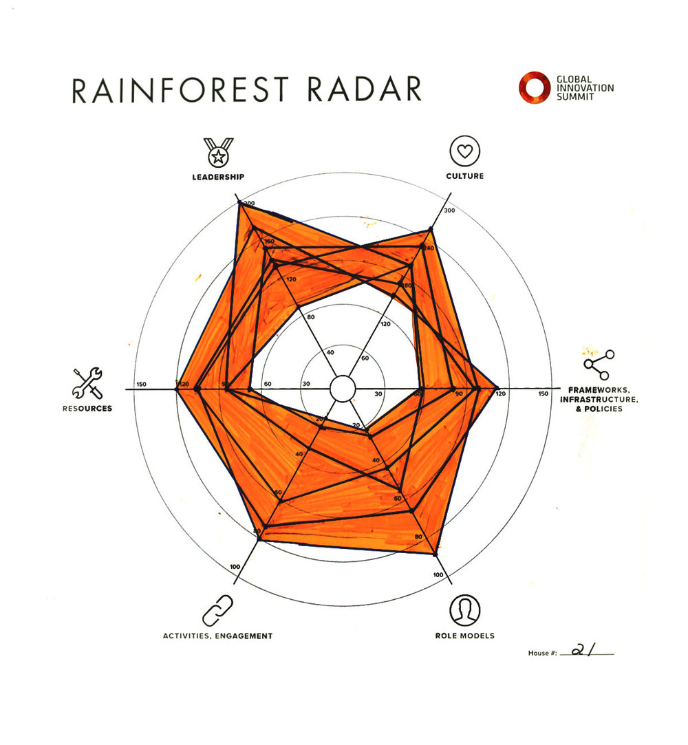 Rainforest_Radar21_1200X1300.jpg