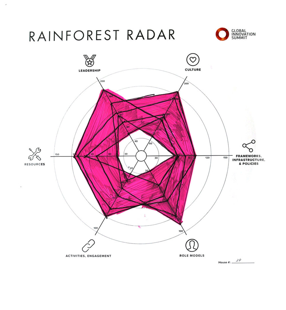 Rainforest_Radar24_1200X1300.jpg