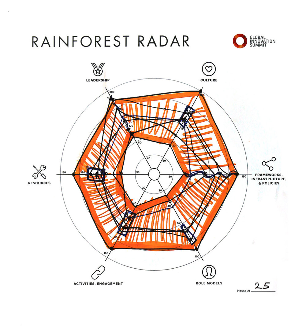 Rainforest_Radar25_1200X1300.jpg