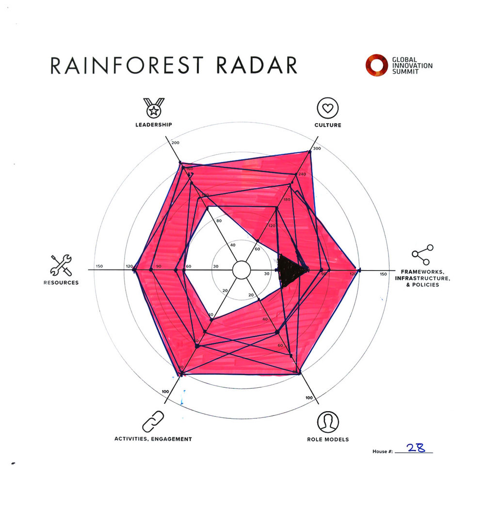 Rainforest_Radar28_1200X1300.jpg