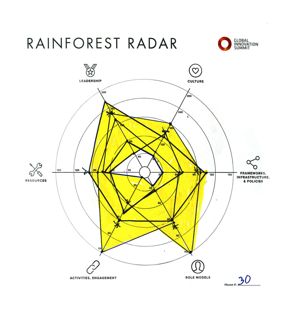 Rainforest_Radar30_1200X1300.jpg