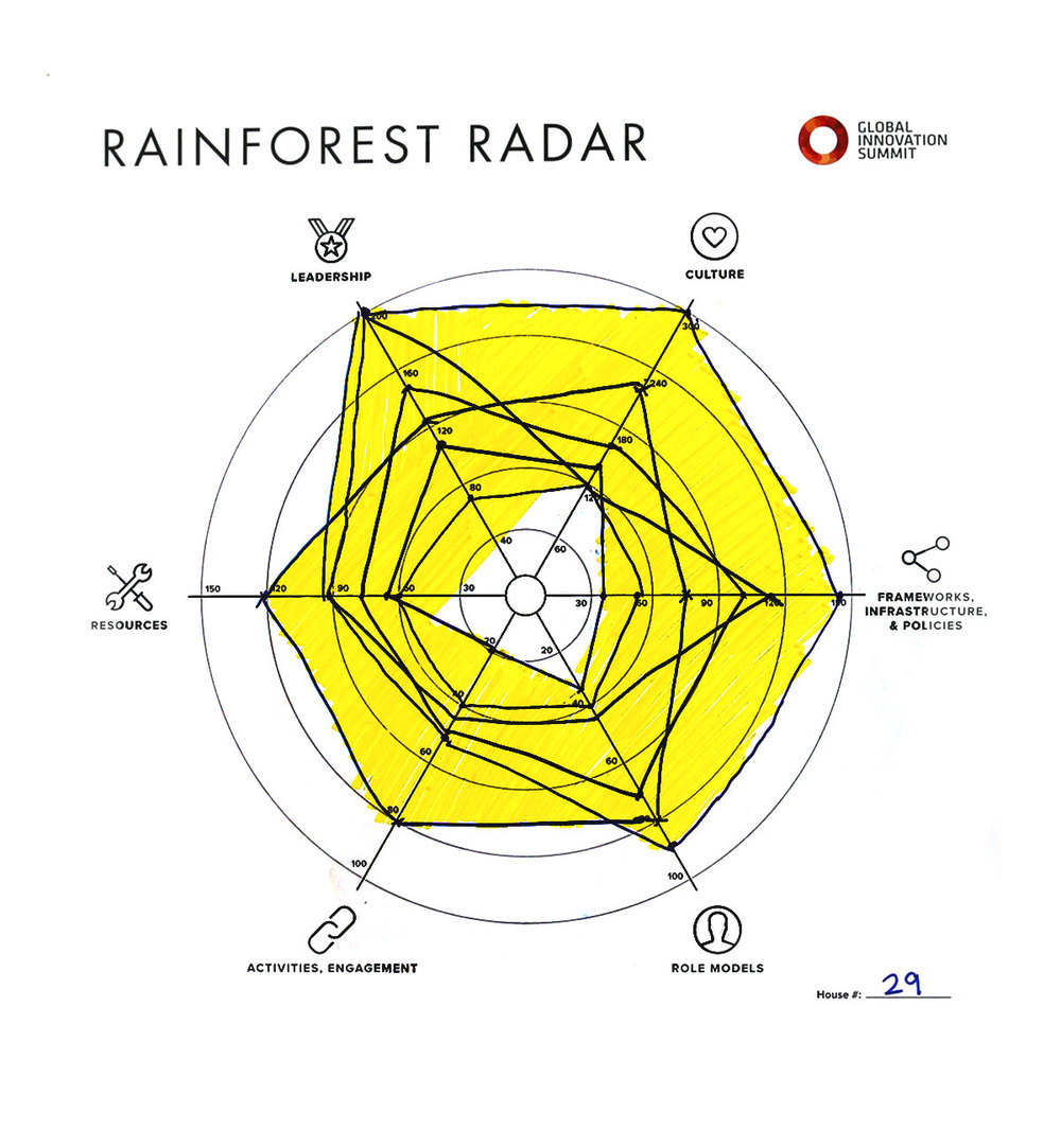 Rainforest_Radar29_1200X1300.jpg