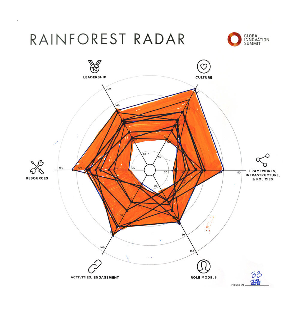 Rainforest_Radar33_1200X1300.jpg